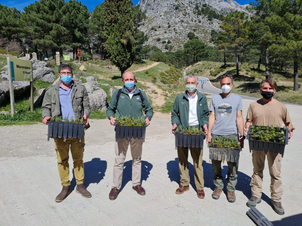 Equipo humano del PN Sierra de Grazalema con los plantones de Abies pinsapo.